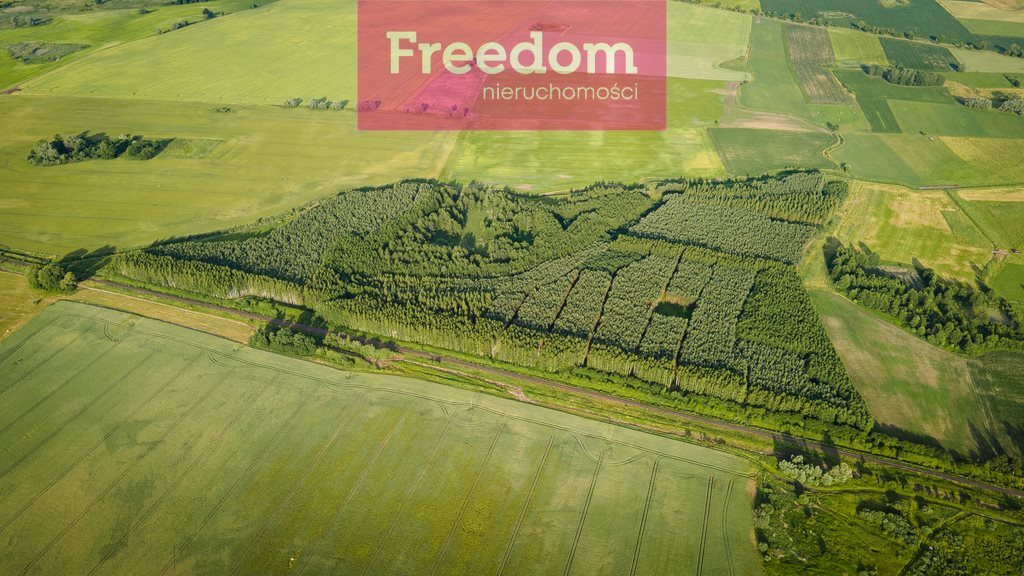 Działka leśna na sprzedaż Parys  205000m2 Foto 6