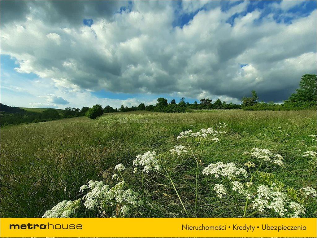 Działka rolna na sprzedaż Morochów, Zagórz  10000m2 Foto 5