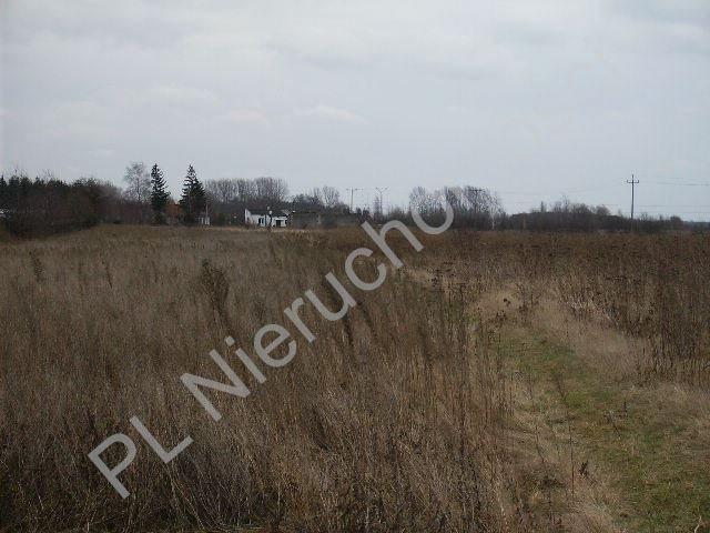 Działka rolna na sprzedaż Mszczonów  10529m2 Foto 1