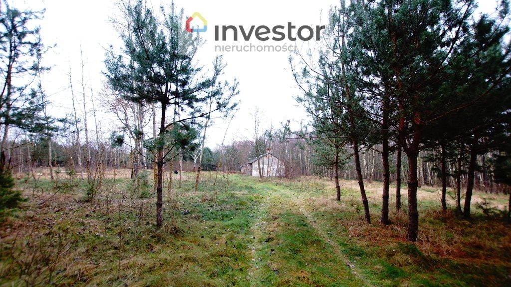 Działka leśna z prawem budowy na sprzedaż Bukowa Wielka  39157m2 Foto 3