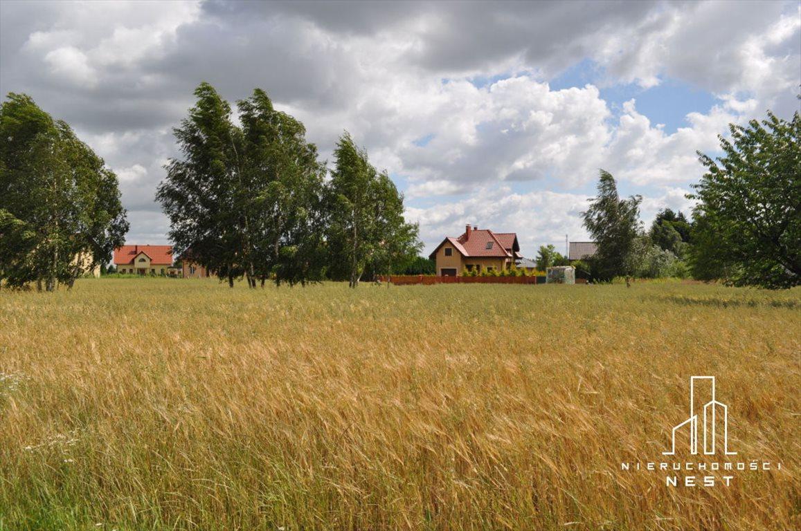 Działka budowlana na sprzedaż Kórnik, 3 km od centrum Kórnika  775m2 Foto 4