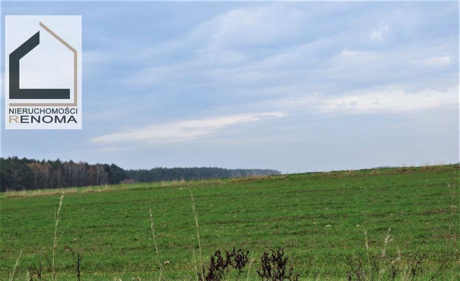 Działka rolna na sprzedaż Rościnno, , Rościnno, Skoki, Wągrowiec, Poznań  40982m2 Foto 3