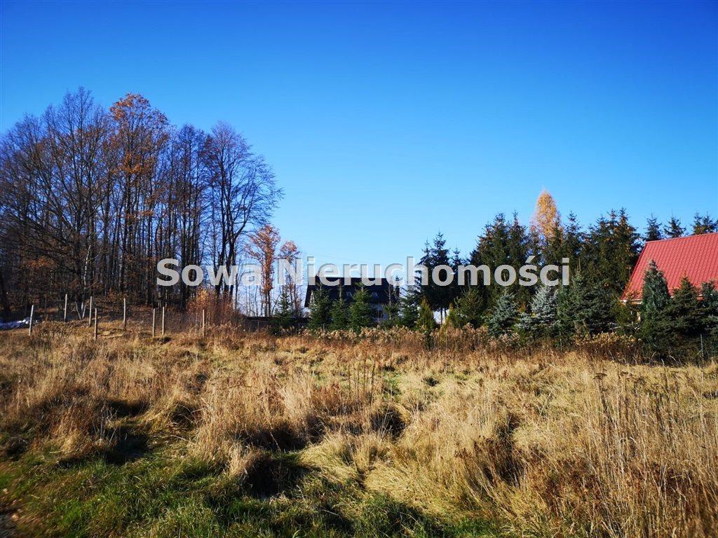 Działka inna na sprzedaż Staniszów  999m2 Foto 2