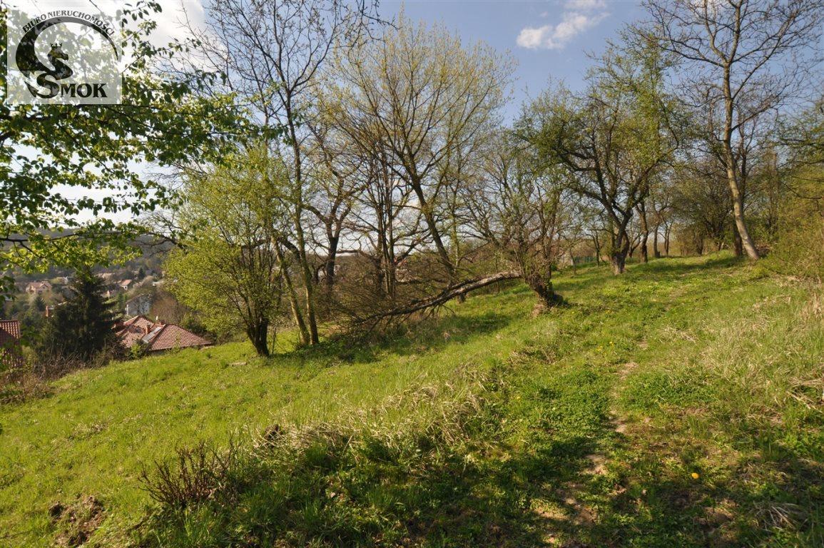 Działka rolna na sprzedaż Kraków, Krowodrza, Przegorzały  2448m2 Foto 3