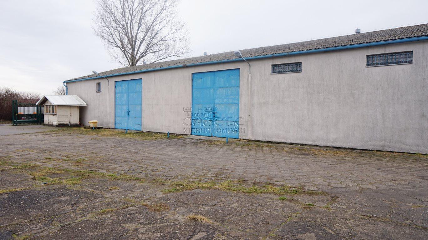 Lokal użytkowy na sprzedaż Czerniejewo  1250m2 Foto 12