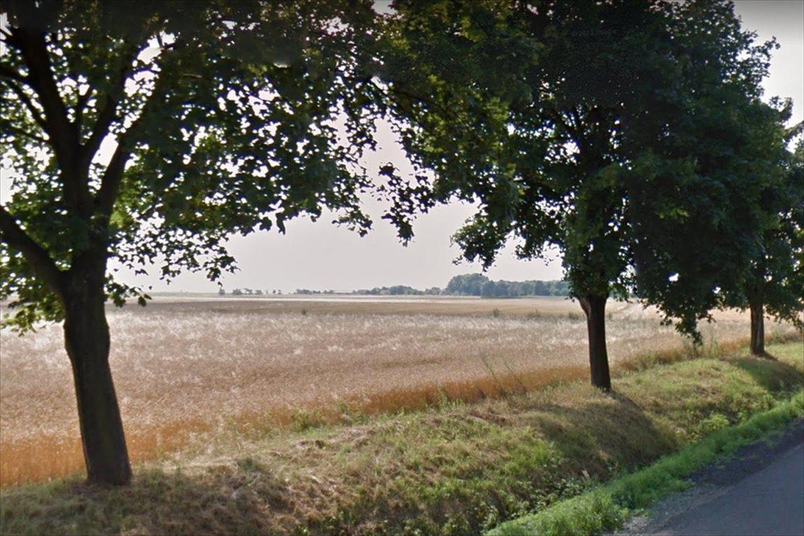 Działka rolna na sprzedaż Świdnica Polska, Kostomłoty  5300m2 Foto 1