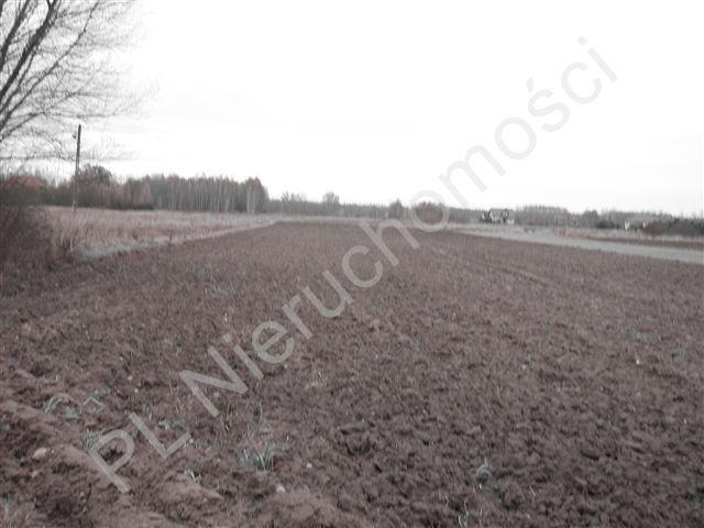 Działka rolna na sprzedaż Jastrzębnik  12730m2 Foto 1