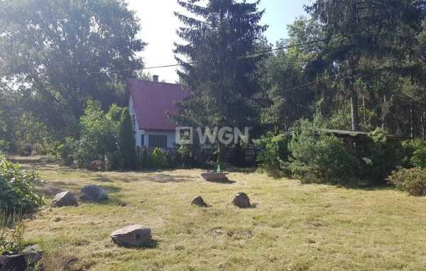 Działka leśna na sprzedaż Radomsko, Ładzice, Brodowe  11600m2 Foto 5