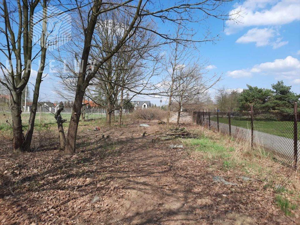 Działka budowlana na sprzedaż Jabłonna, Marmurowa  2579m2 Foto 1