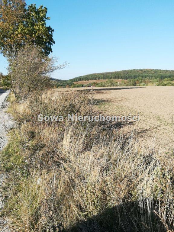 Działka budowlana na sprzedaż Świebodzice, ok. 5 km od Świebodzic  1132m2 Foto 5