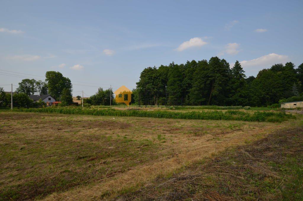 Działka budowlana na sprzedaż Lubiatów  3700m2 Foto 6