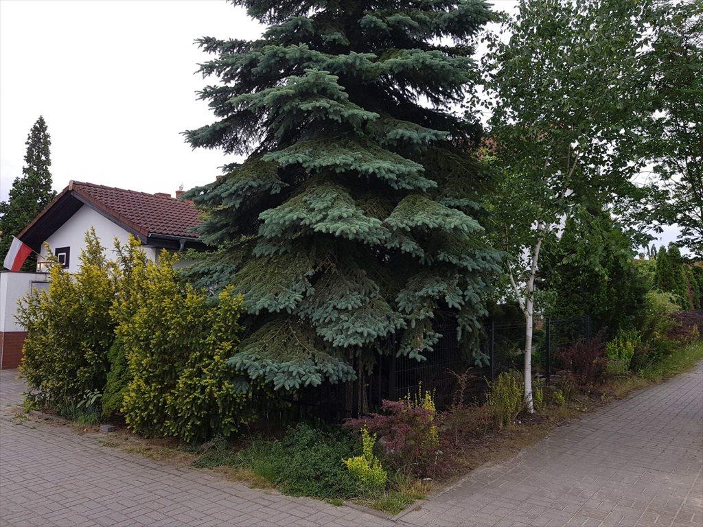 Dom na wynajem Złotniki, Sosnowa  149m2 Foto 1
