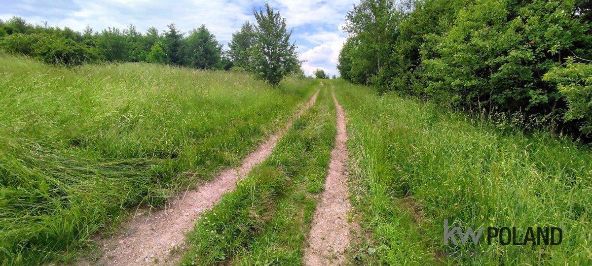 Działka rolna na sprzedaż Kudowa-Zdrój, Pstrążna  14309m2 Foto 7