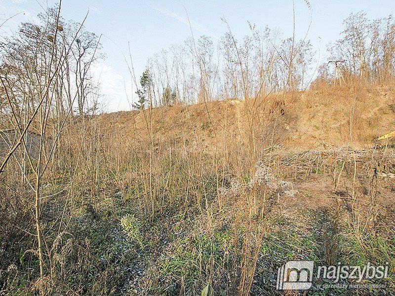 Działka inwestycyjna na sprzedaż Chojna, Barnkowo  5300m2 Foto 9