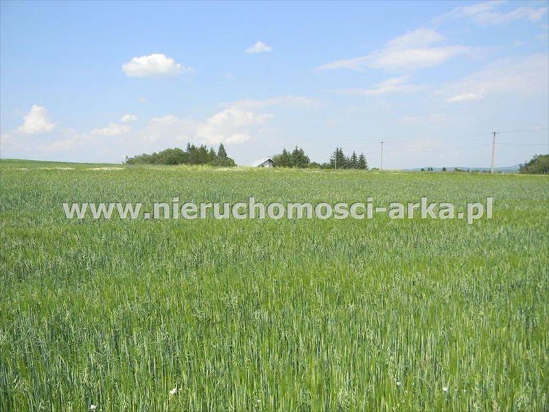Działka rolna na sprzedaż Stare Rybie  7200m2 Foto 1