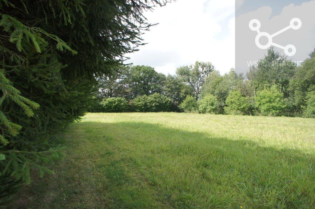 Działka rolna pod dzierżawę Krzywice  8385m2 Foto 2