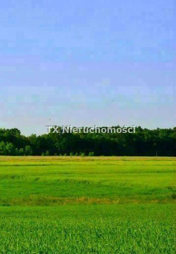 Działka budowlana na sprzedaż Gliwice, Brzezinka  847m2 Foto 1