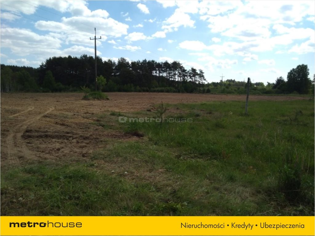 Działka budowlana na sprzedaż Zakrzewo, Linia  55003m2 Foto 4