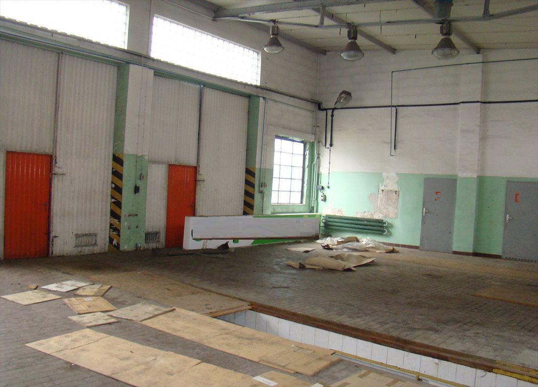Lokal użytkowy na sprzedaż Nowa Sól, Centrum, ul. Szeroka  563m2 Foto 10