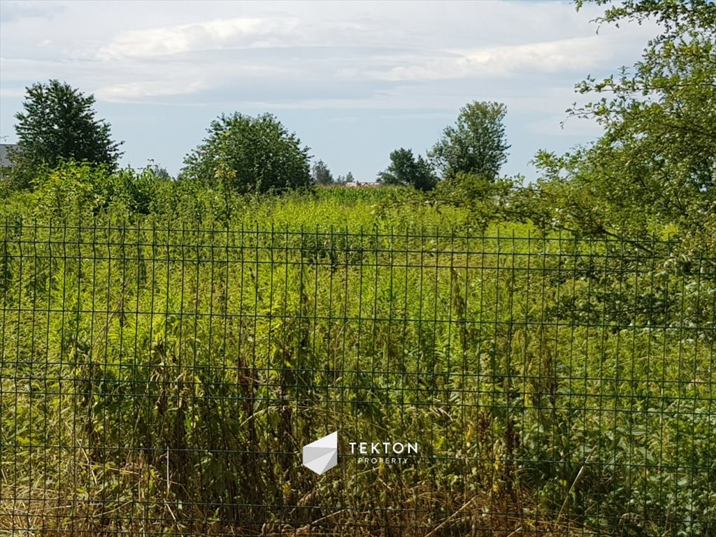 Działka rolna na sprzedaż Mokronos Dolny, Morelowa  3000m2 Foto 7