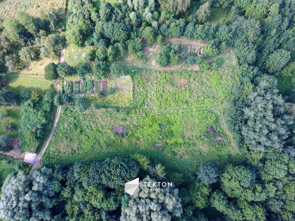 Działka leśna na sprzedaż Kraków, Salwator, Panoramiczna  4100m2 Foto 9