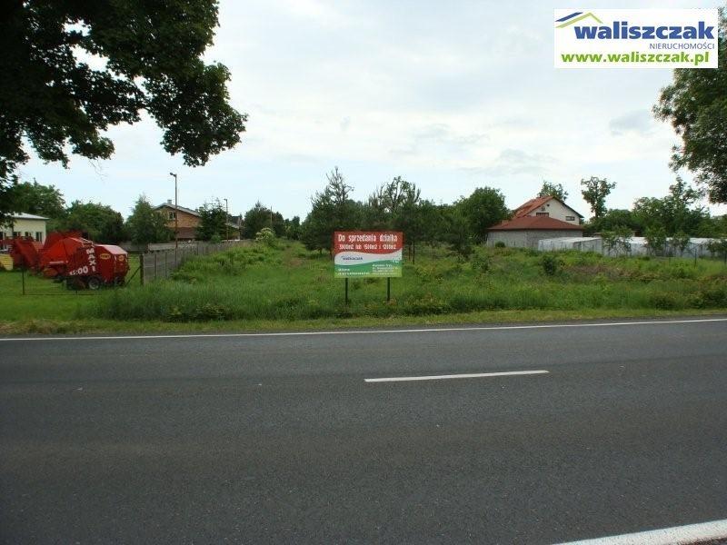 Działka budowlana na sprzedaż Piotrków Trybunalski  850m2 Foto 3