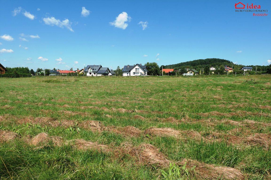 Działka budowlana na sprzedaż Stara Wieś  1050m2 Foto 1