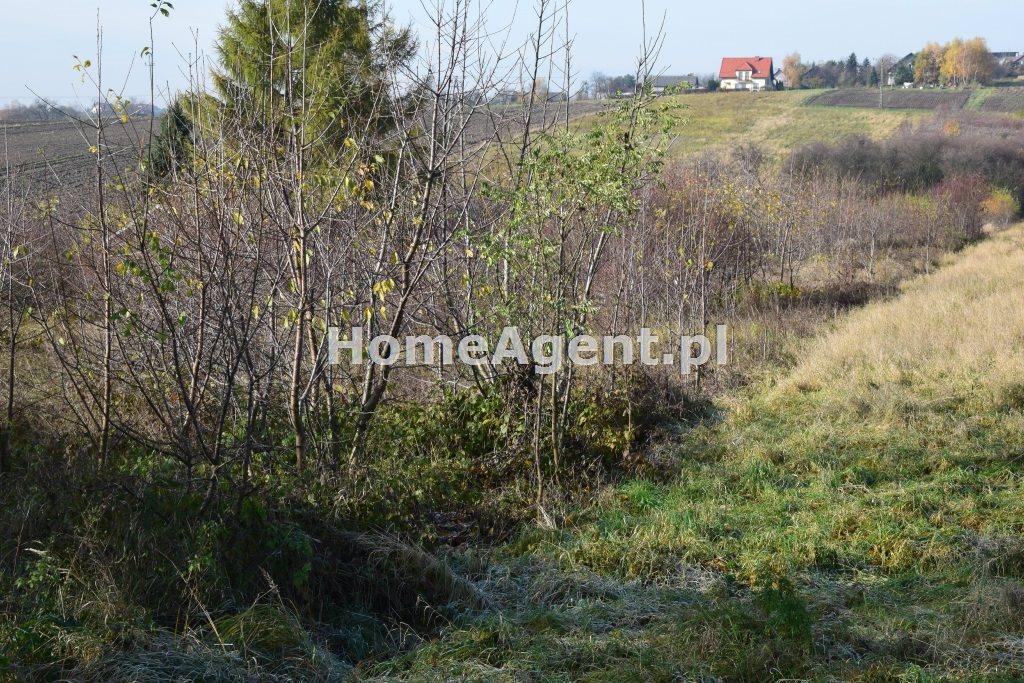 Działka budowlana na sprzedaż Wielka Wieś  7400m2 Foto 8
