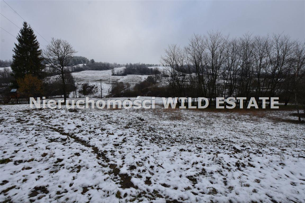 Działka rolna na sprzedaż Paszowa  4002m2 Foto 7