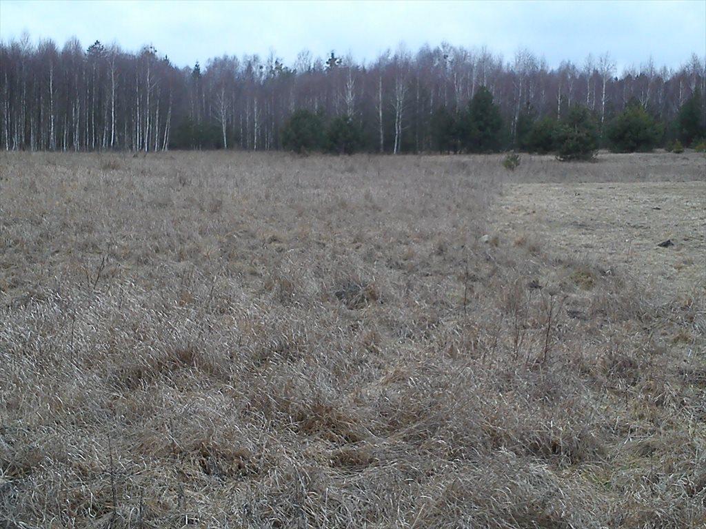 Działka rolna na sprzedaż Starzyna  7600m2 Foto 3
