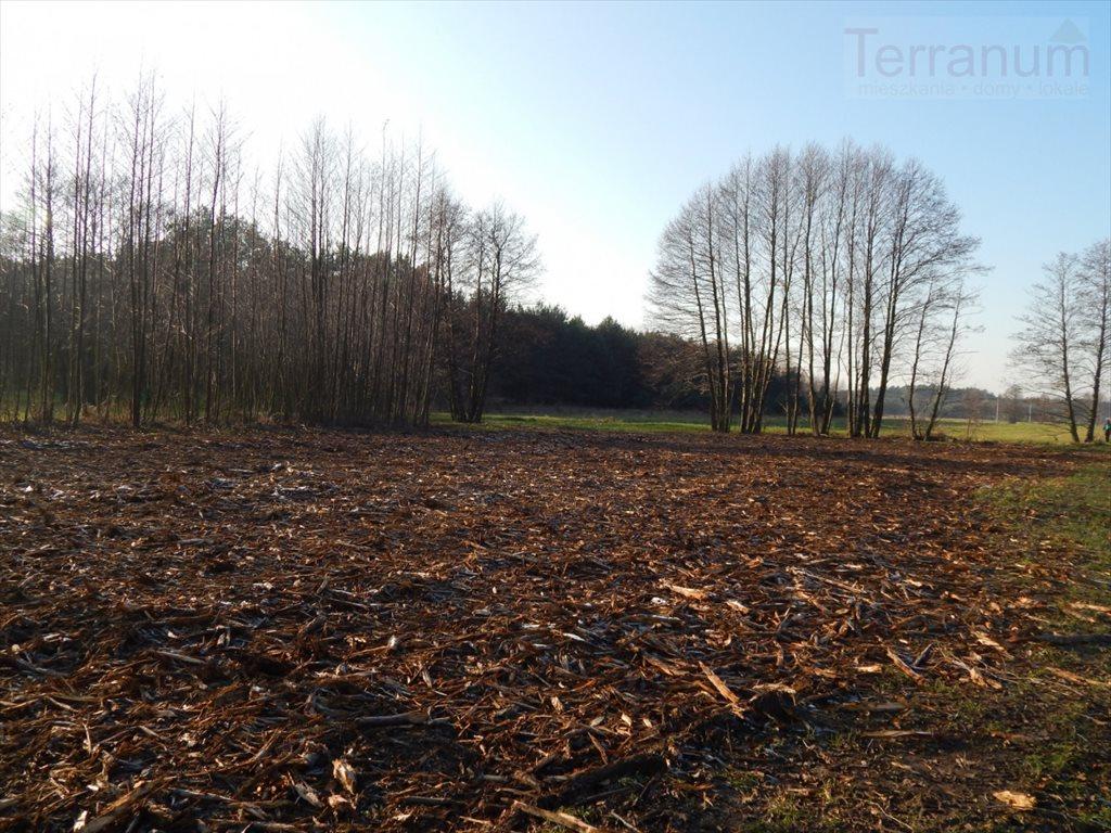 Działka rolna na sprzedaż Pogorzelec  1400m2 Foto 1