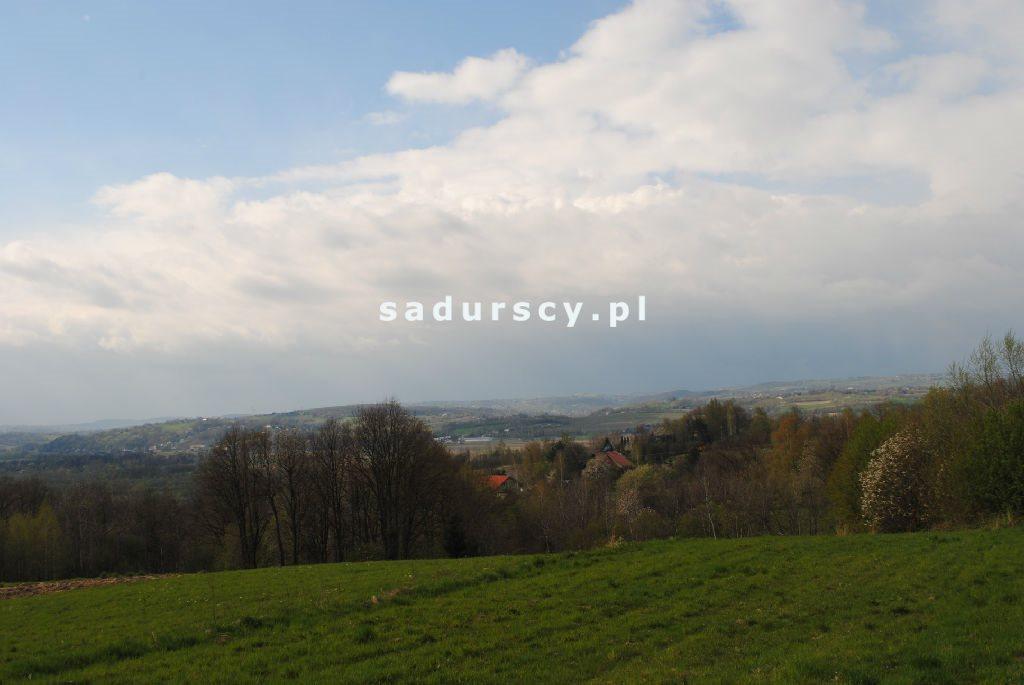 Działka rolna na sprzedaż Gruszowiec  5500m2 Foto 2