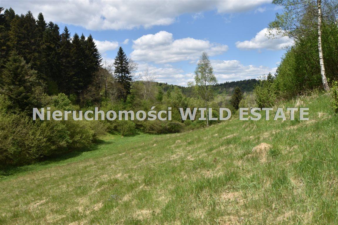 Działka rolna na sprzedaż Olszanica  17148m2 Foto 7