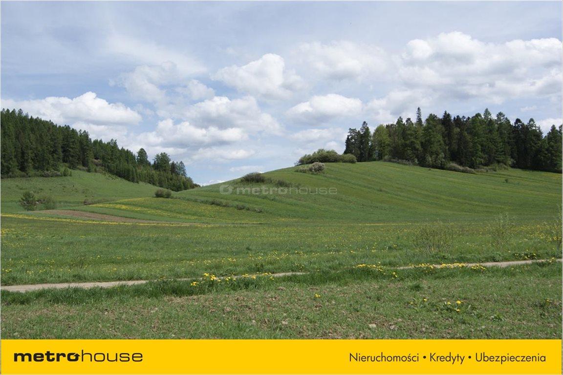 Działka rolna na sprzedaż Niedzica, Łapsze Niżne  1247m2 Foto 10