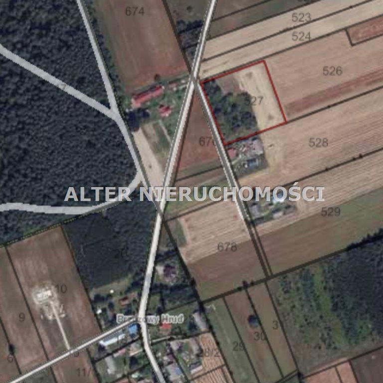 Działka rolna na sprzedaż Pawełki  8300m2 Foto 7