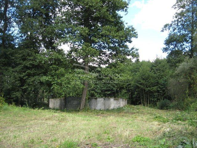 Działka budowlana na sprzedaż Bydlin  10980m2 Foto 5