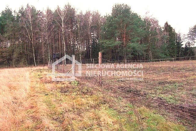 Działka leśna na sprzedaż Strzeczona  129577m2 Foto 10