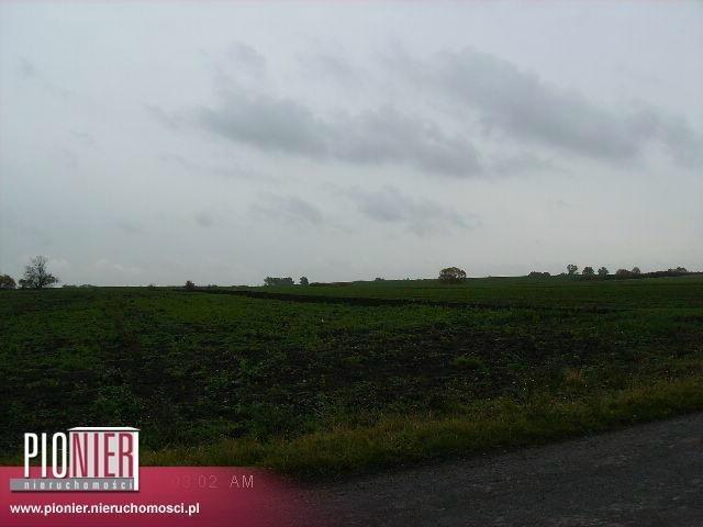 Działka rolna na sprzedaż Warzymice  19900m2 Foto 2