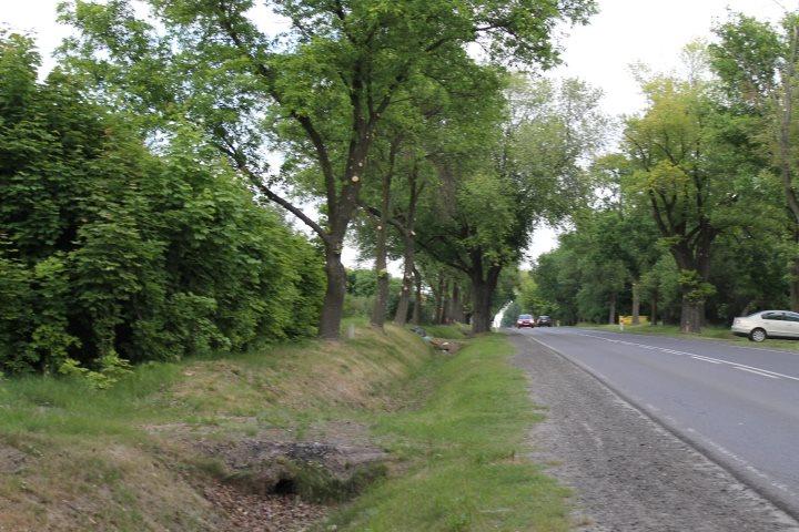 Działka rolna na sprzedaż Skotniki  17600m2 Foto 5