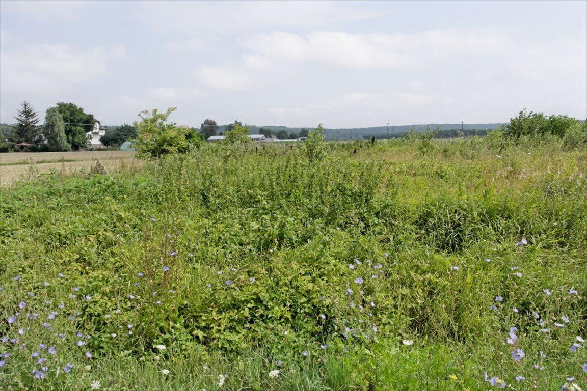 Działka rolna na sprzedaż Zakurzewo  1249m2 Foto 2