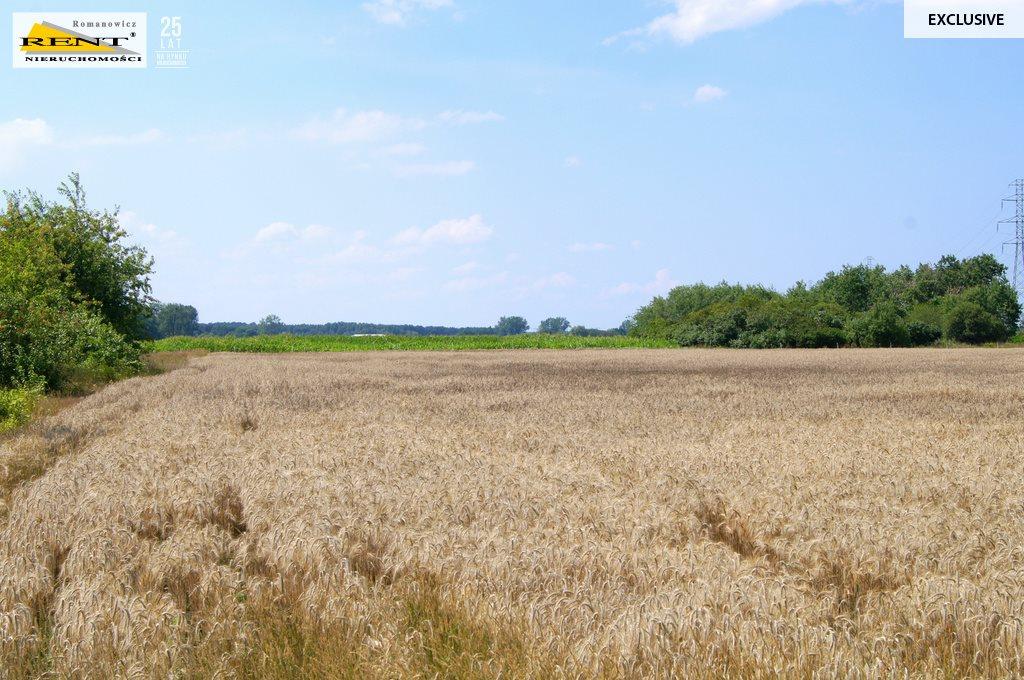 Działka rolna na sprzedaż Kobylanka  3001m2 Foto 6