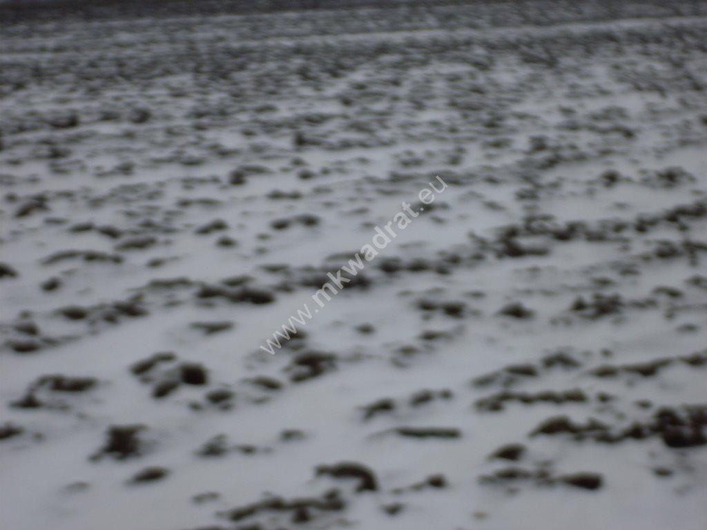 Działka siedliskowa na sprzedaż Ołtarzew  6433m2 Foto 7
