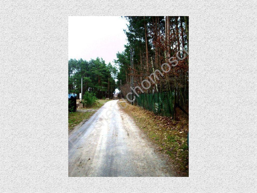 Działka leśna na sprzedaż Stefanowo  1900m2 Foto 3