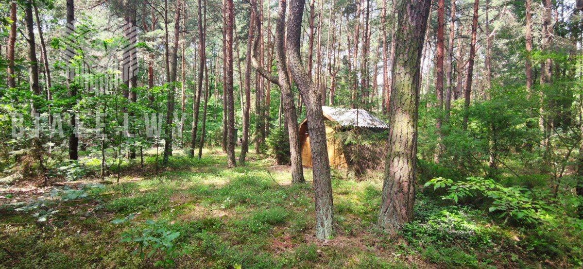 Działka leśna na sprzedaż Radachówka  1200m2 Foto 3