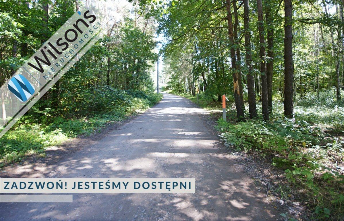 Działka leśna na sprzedaż Władysławów  10551m2 Foto 1