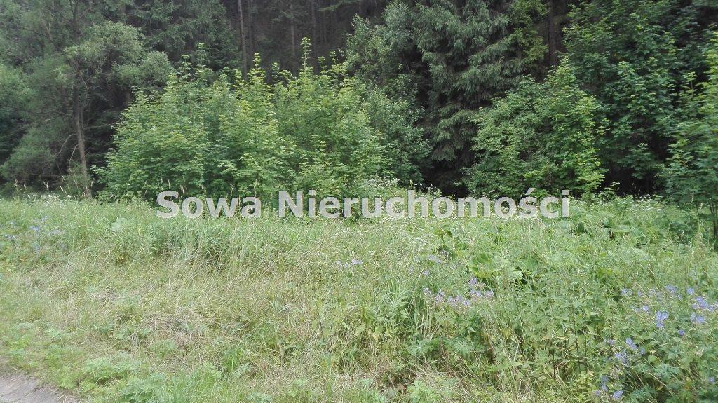 Działka inna na sprzedaż Mieroszów, okolice Mieroszowa  3900m2 Foto 2