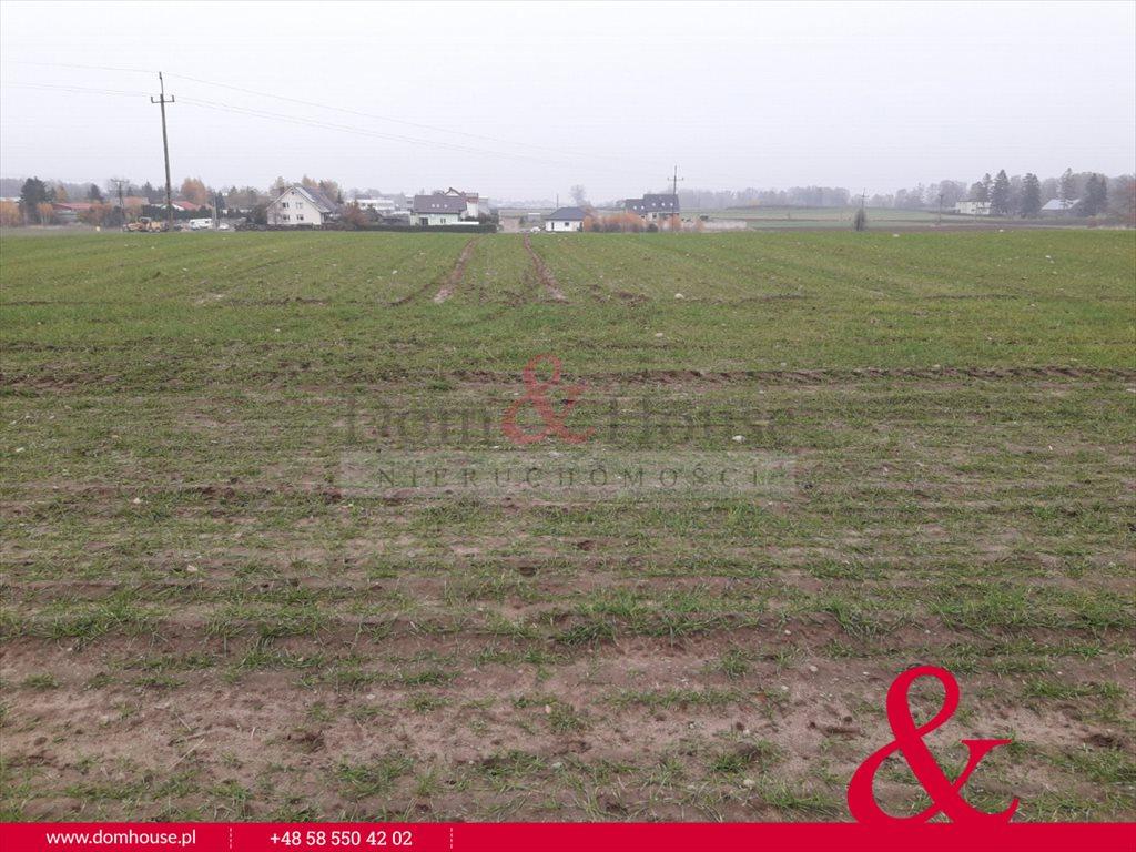 Działka inwestycyjna na sprzedaż Miszewko  62878m2 Foto 3