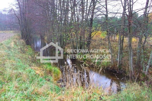 Działka leśna na sprzedaż Skwierawy  64900m2 Foto 10