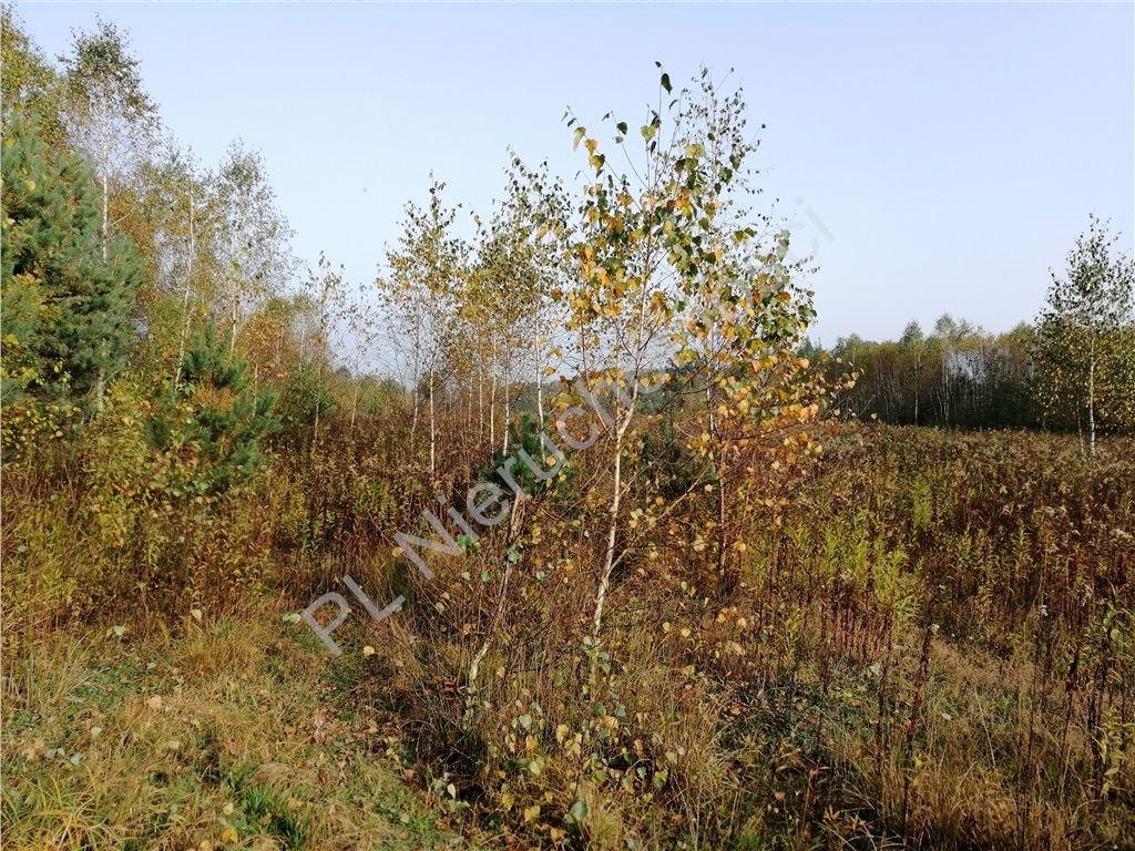 Działka rolna na sprzedaż Rakówiec  3896m2 Foto 2