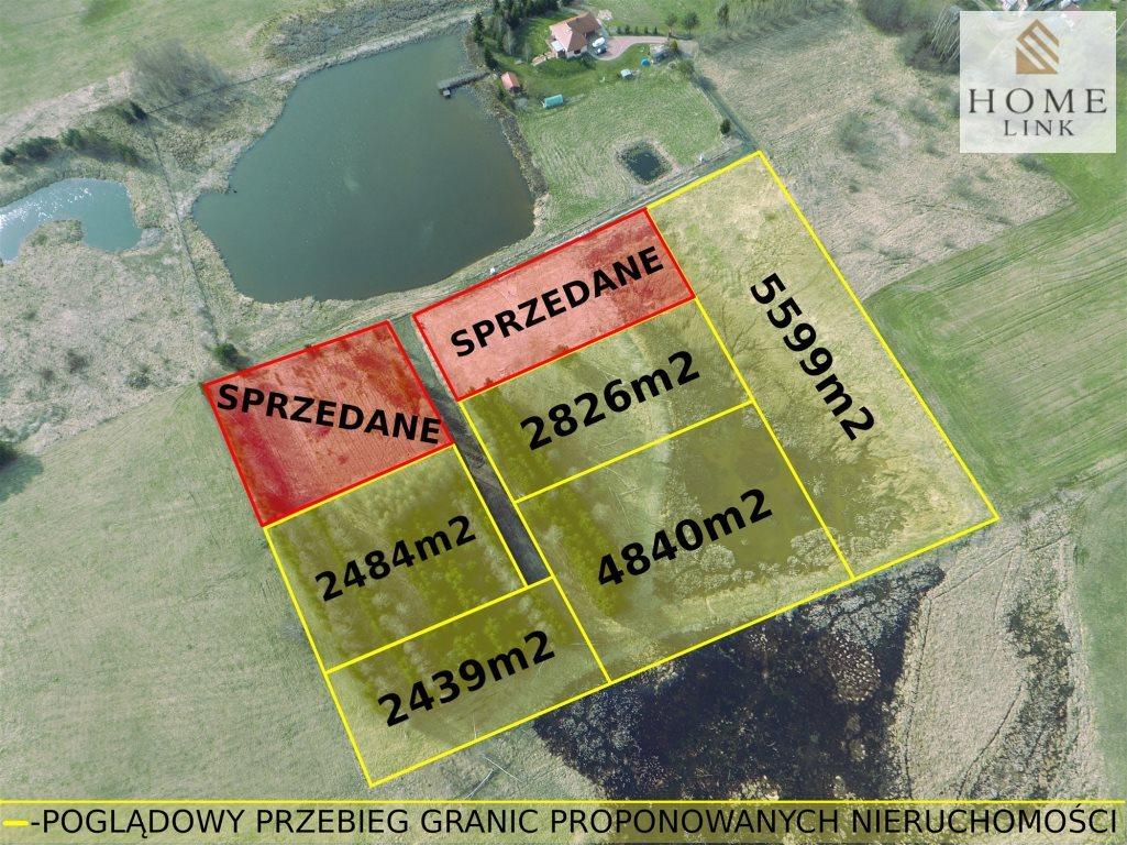 Działka budowlana na sprzedaż Ignalin  4840m2 Foto 3
